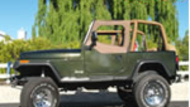 1995 jeep wrangler manual pdf